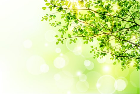 Sunlight With Green Tree Spring Background Free Vector In Adobe Illustrator Ai Ai Vector Illustration Graphic Art Design Format Format For Free Download 317 53kb