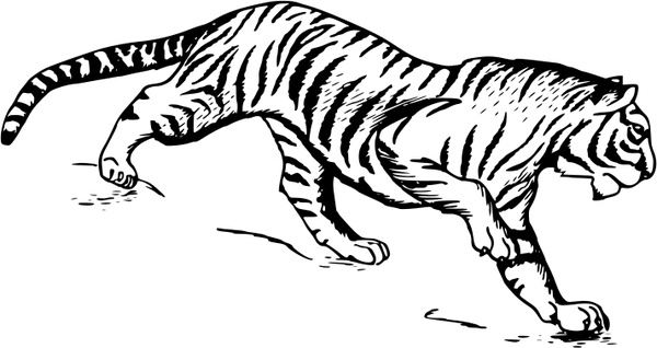 Tiger 1 Free vector in Open office drawing svg ( .svg