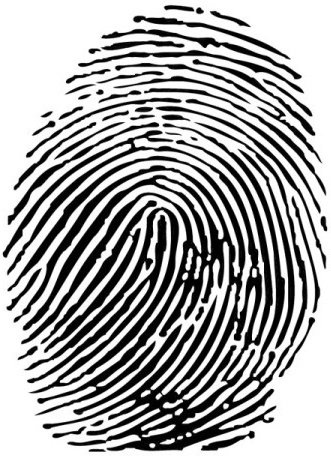 Fingerprint Free Vector Download 86 Free Vector For