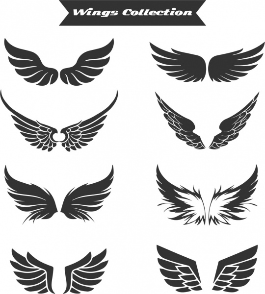 Wings free vector download (1,202 Free vector) for