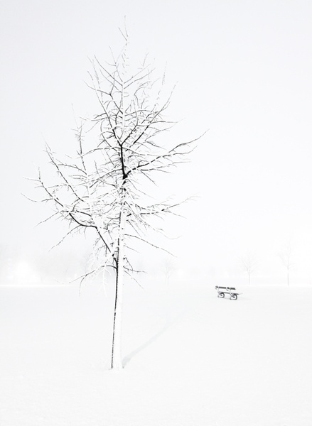 Blizzard images free download free stock photos download
