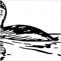 lineart duck free vector