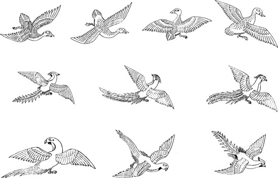 Bird crown free vector download (3,291 Free vector) for