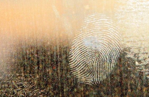 fingerprints on windows 的圖片結果
