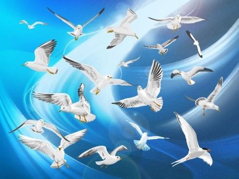 flying bird silhouette free
