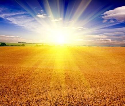 sunrise hd free stock