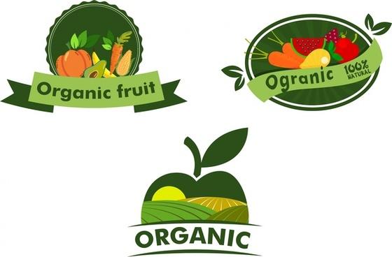 fruit logo free vector