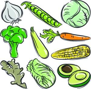 vegetables drawing vegetable easy sorts simple vegetarian eps welovesolo