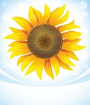 sunflower free vector