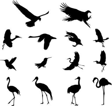 Birds silhouette on wire free vector download (8,293 Free