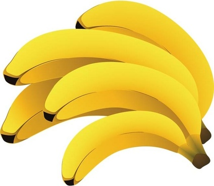 banana free vector in adobe illustrator