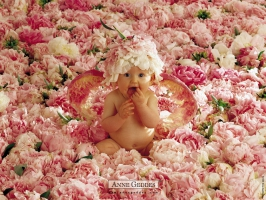 baby photo wallpaper wallpapers