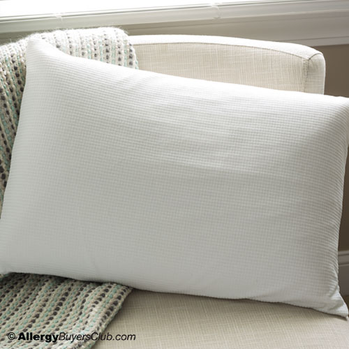 Rejuvenite Talalay Classic High Profile Latex Pillow