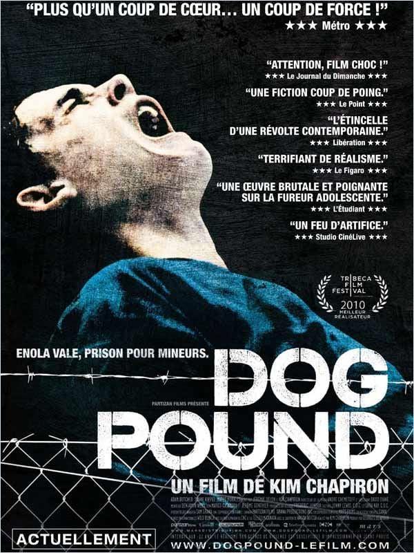 19469229 Dog Pound