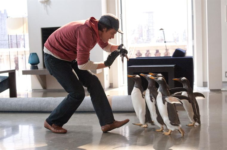 Mr Popper (Jim Carrey) et ses pingouins, friands de poisson