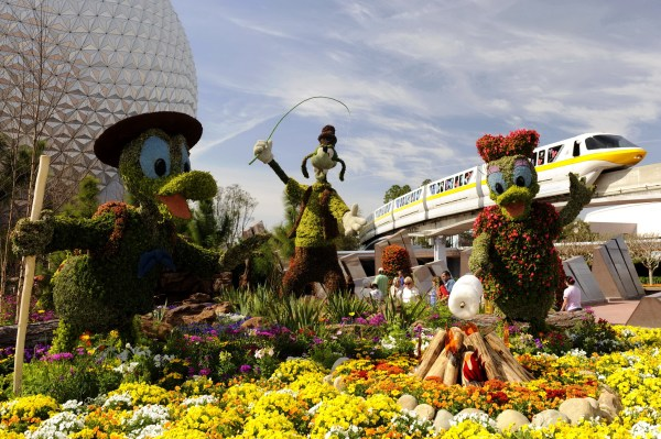 Images of Disney World Amusement Park