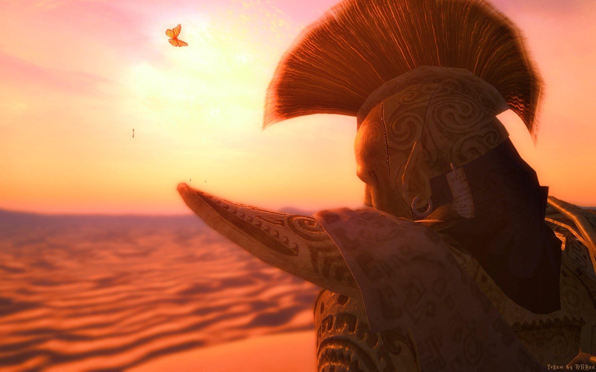 Oblivion Wallpaper Hd The Elder Scrolls Iii Morrowind Hd Wallpaper Background