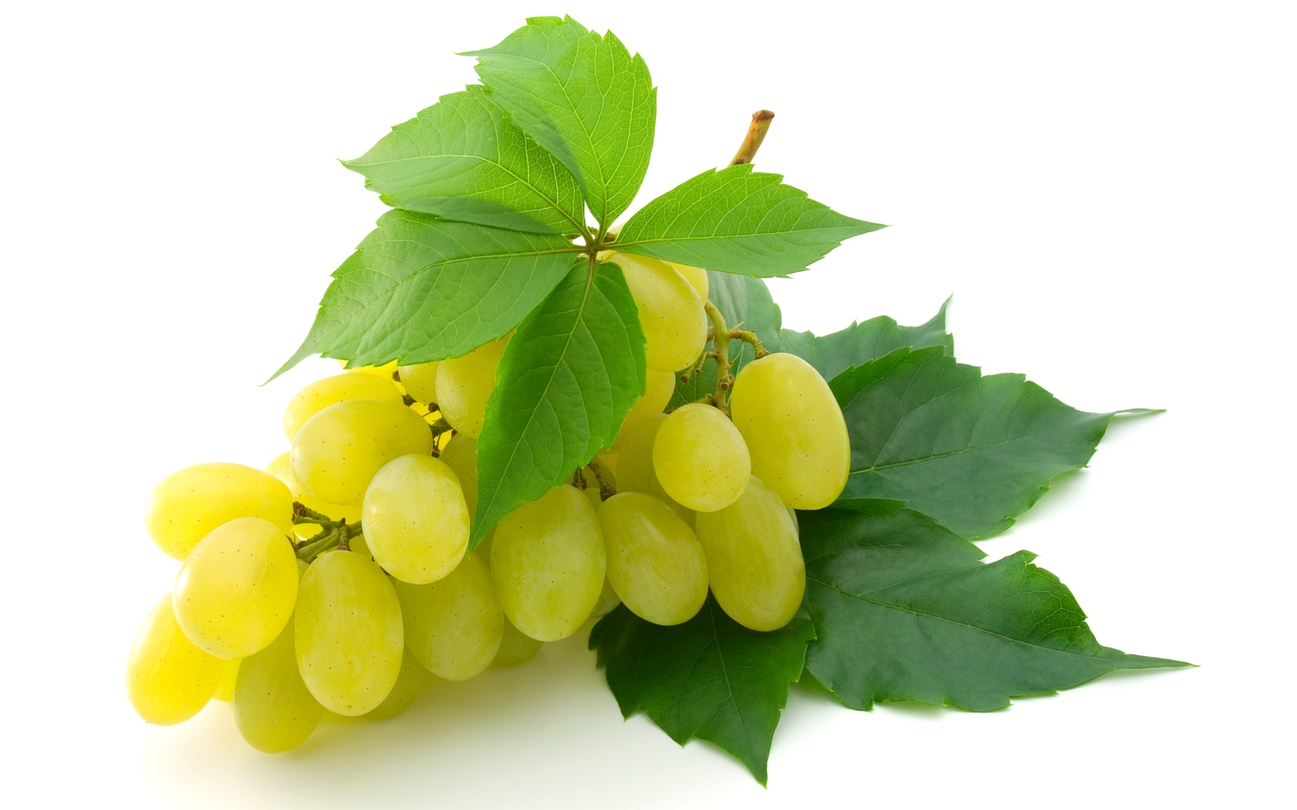 Iphone X Wallpaper Transparent Grapes Hd Wallpaper Background Image 2560x1600 Id