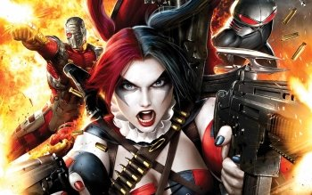 383 Harley Quinn HD Wallpapers Background Images