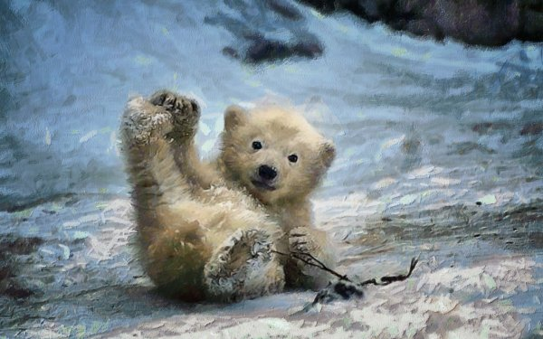 Baby Polar Bear Cub Wallpaper