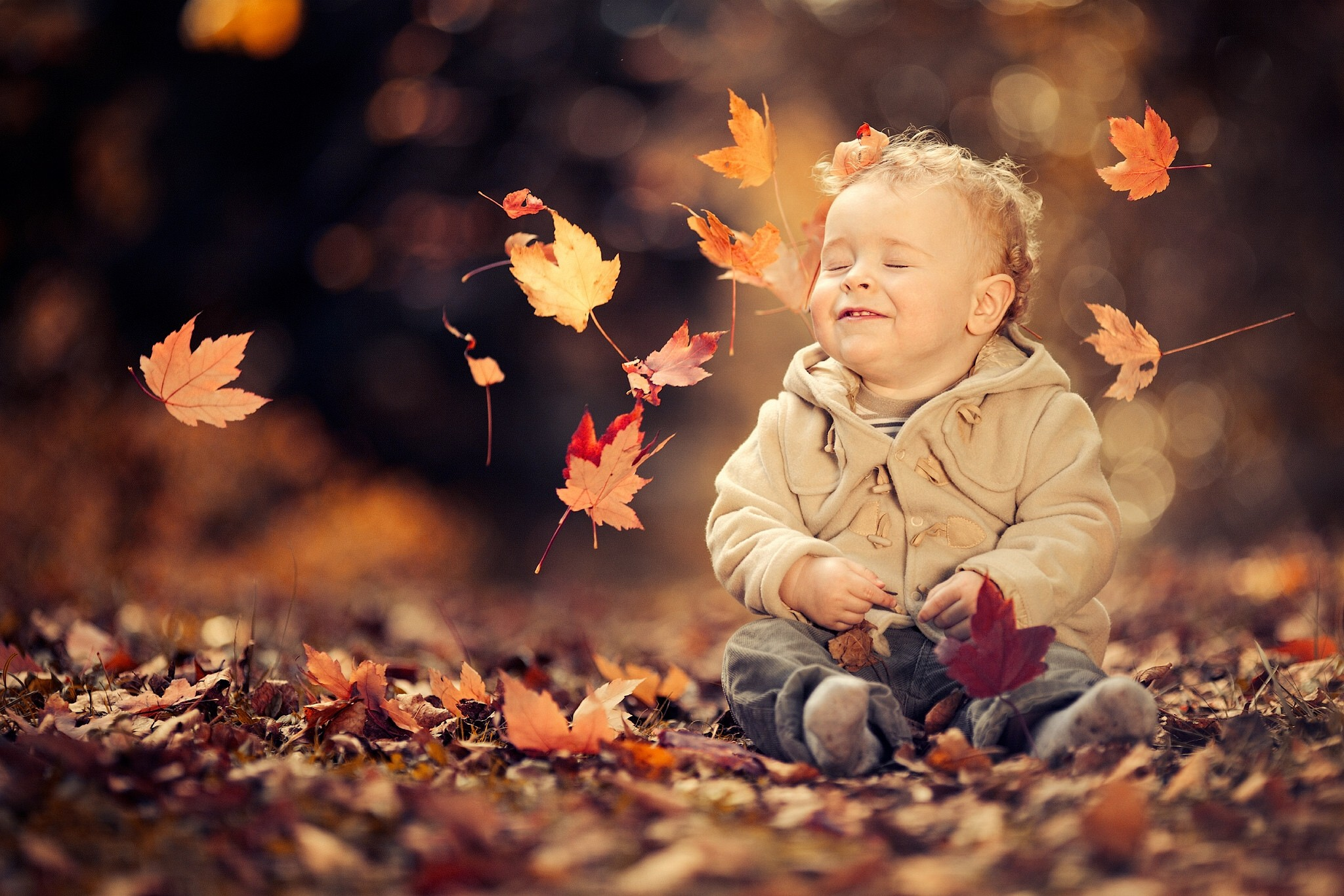 Cute Boy Child Wallpapers Little Boy Enjoying The Autumn Breeze Hd Wallpaper