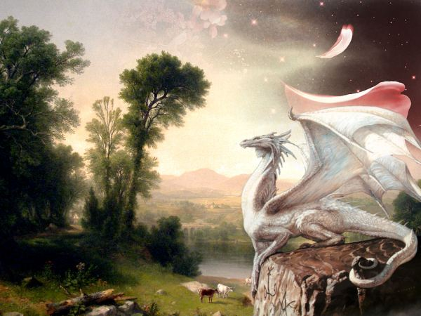 3 White Dragon Hd Wallpapers Background