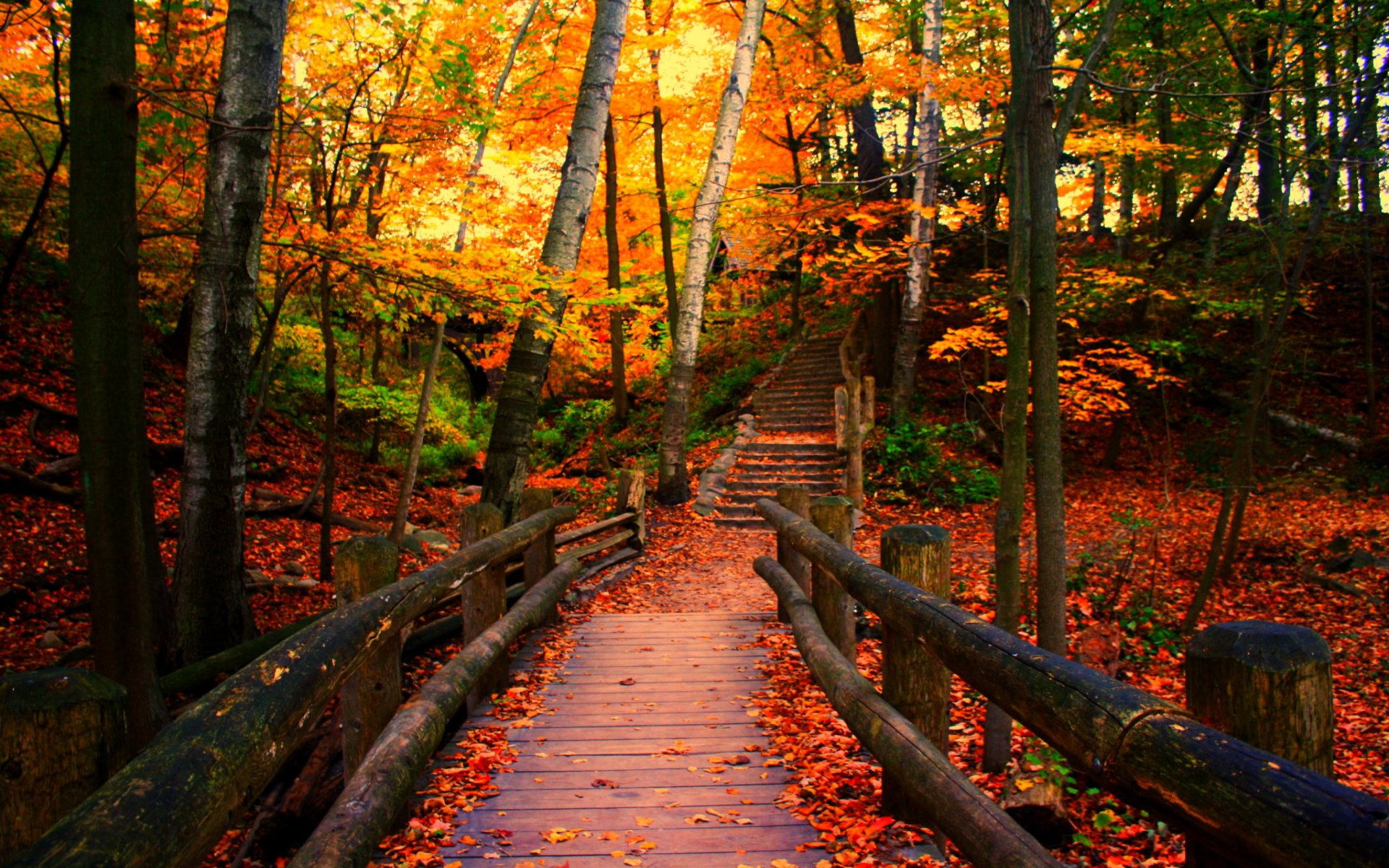 Fall Wallpaper For Large Monitors Bridge In Autumn Park Hd Wallpaper Background Image