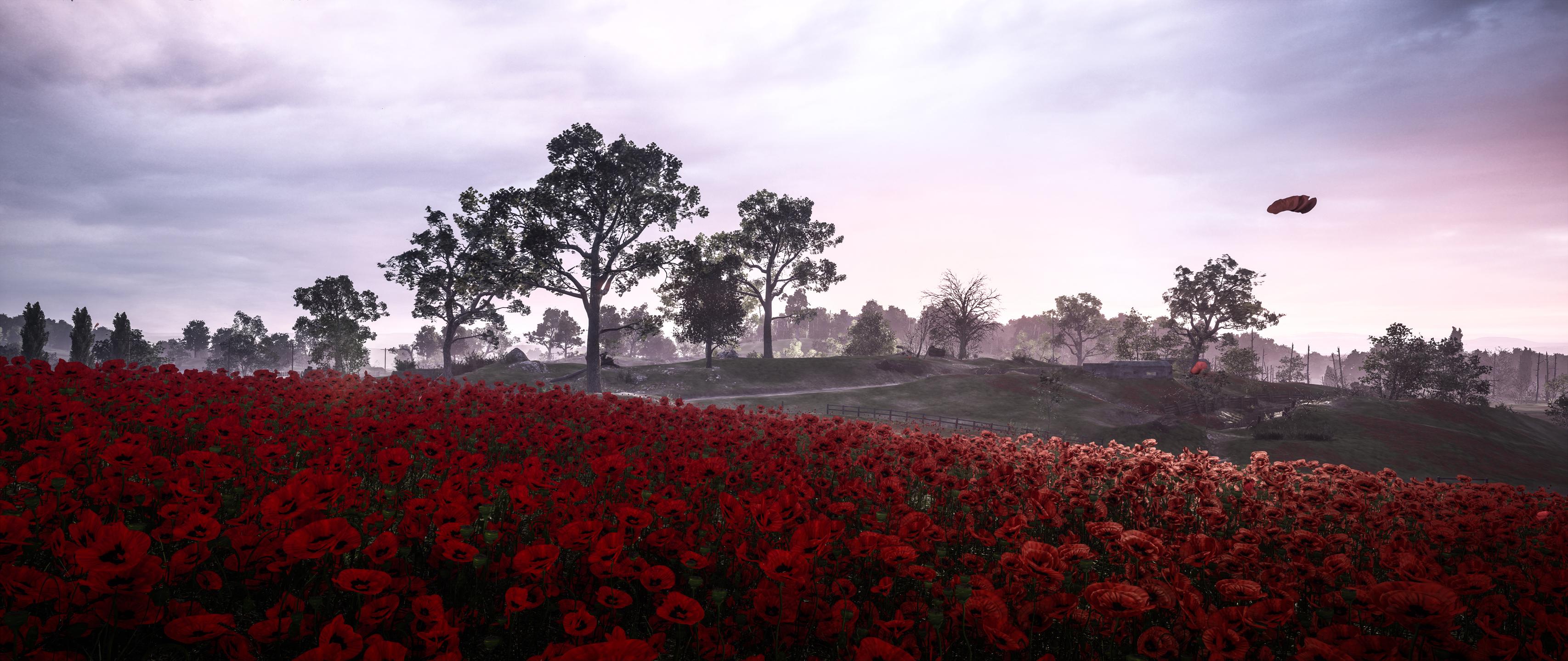Poppy Wallpaper For Iphone Battlefield 1 Hd Wallpaper Background Image 3413x1440