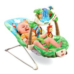 Fisher Price Swing Chair Ergonomic Cushion Amazon.com: Fisher-price Rainforest Bouncer (discontinued By Manufacturer): Baby