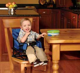 regalo portable high chair plush leather desk baby on shoppinder my royal discontinued by manufacturer