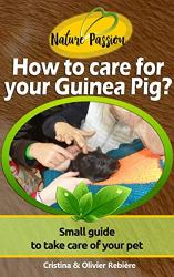 PAP How to care for your Guinea Pig?