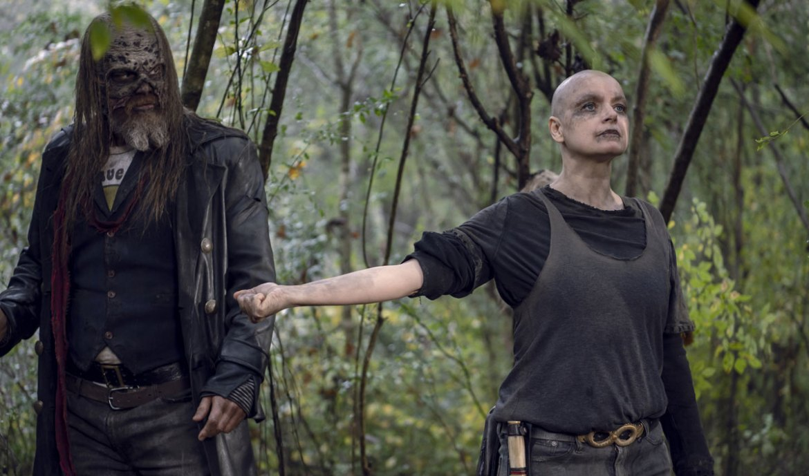 Image result for whisperers the walking dead