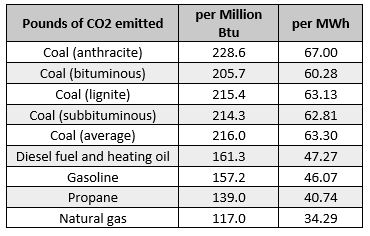 carbon by fuel type