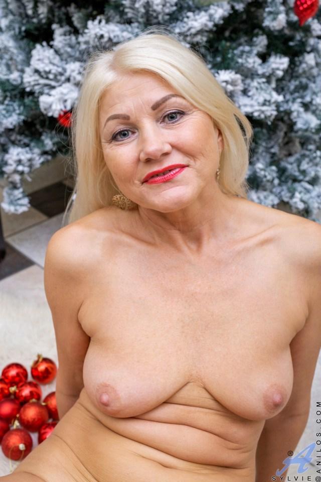 Anilos.com - Sylvie: Happy Holidays