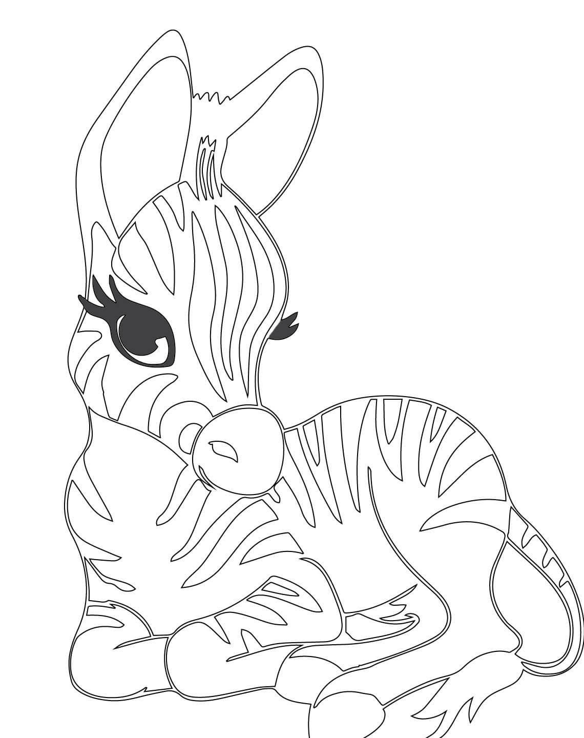 Baby Zebra Coloring Pages Get Sketch Coloring Page