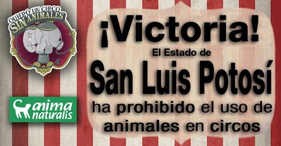 ¡San Luis Potosí, 12º estado en prohibir los circos con animales!