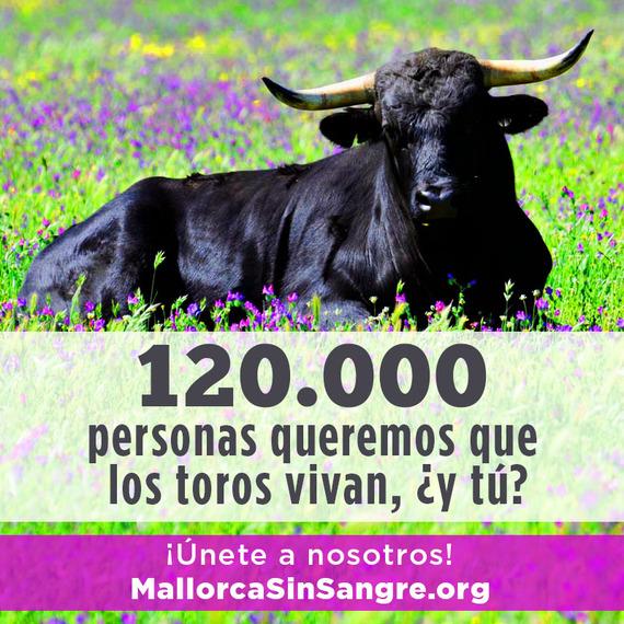 Mallorca Sin Sangre supera toda expectativa alcanzando ya las 120.000 firmas