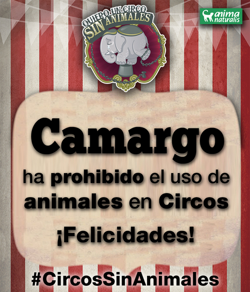 ¡Camargo se declara libre de circos con animales!