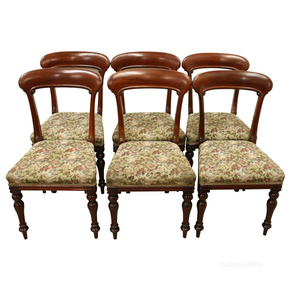 Dining Chair Set Of 6 Set Of 6 Scottish Victorian Dining Chairs
