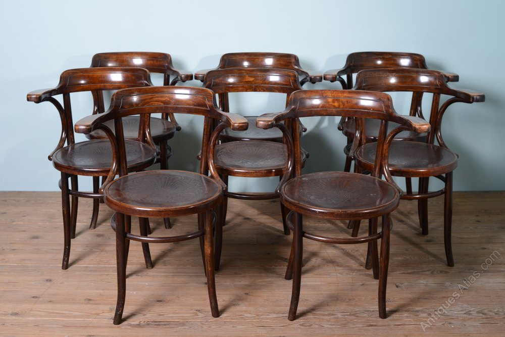 bent wood chair dining room wingback chairs set of 8 1930's bentwood chairs. - antiques atlas