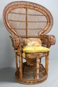 Antiques Atlas - 1960's Rattan Peacock Chair
