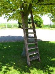 Antique Ladders  Antiques Atlas