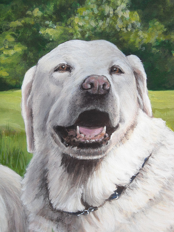 Dog Painting  Right Side Detail  Cindy Scaife