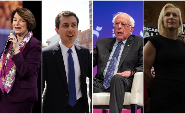 2020 Presidential Election Where Democrats Stand On