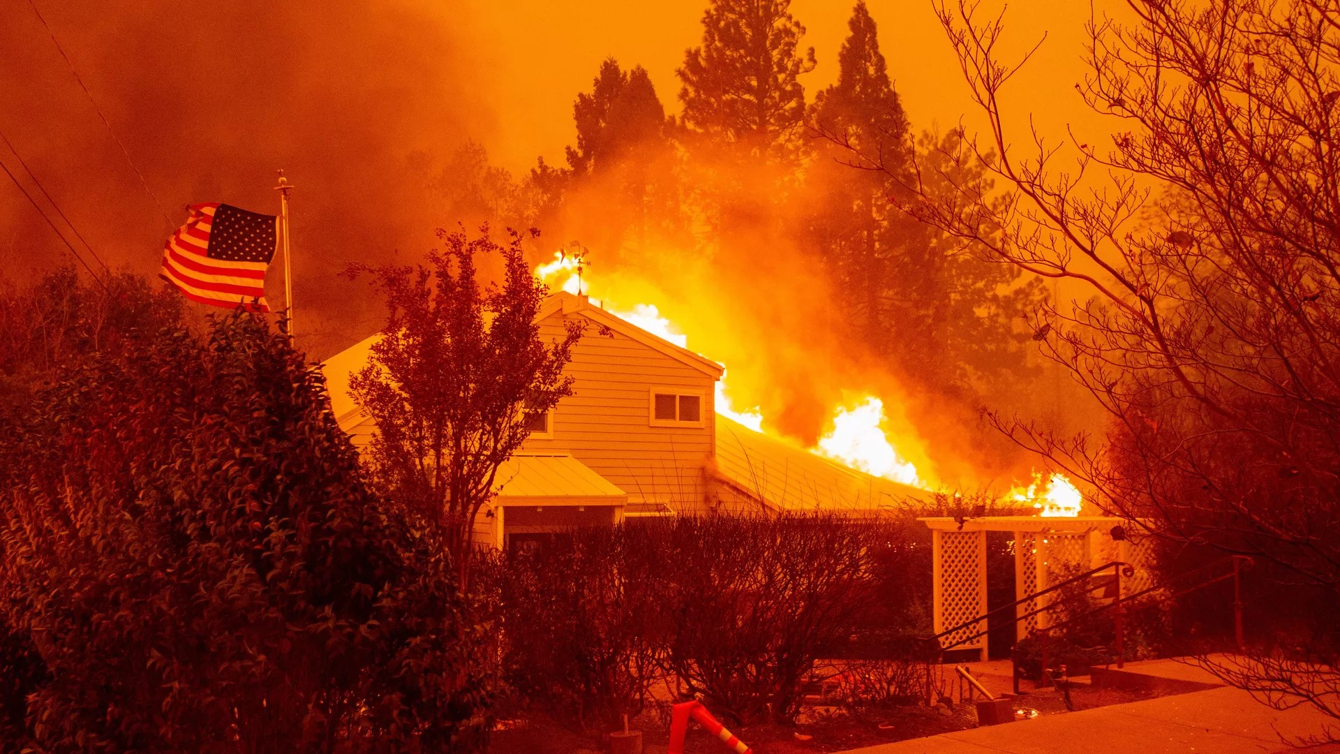 hight resolution of reading guide the causes and impact of california s wildfires