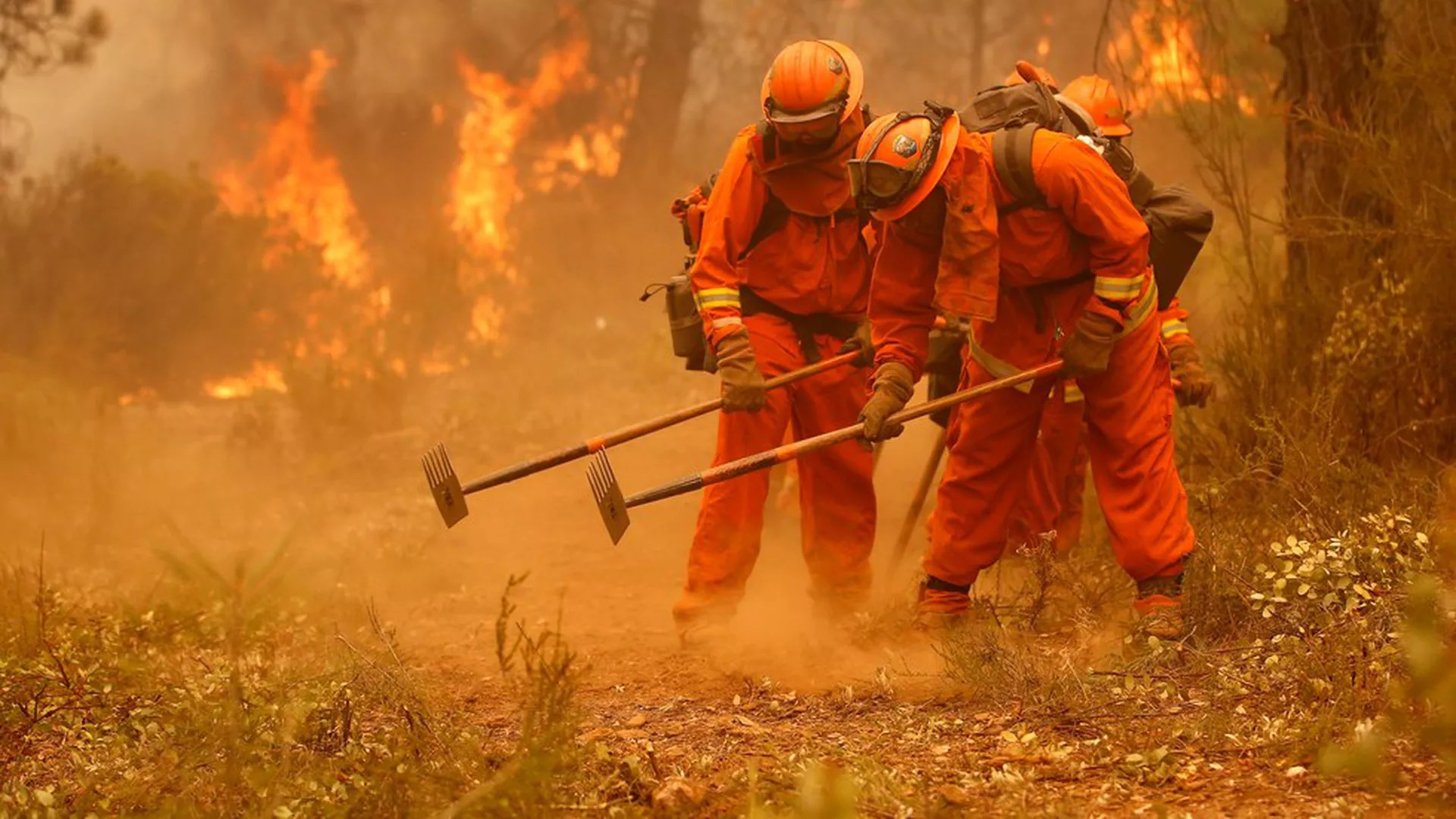 The Angels In Orange Fighting California S Fires Axios
