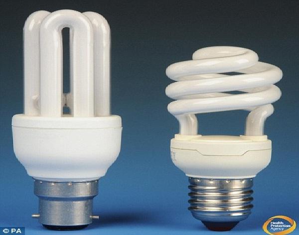 Best Eco Light Bulbs