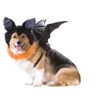Bat Halloween Dog Costume | BaxterBoo