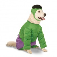 Big Dog Marvel Incredible Hulk Dog Costume