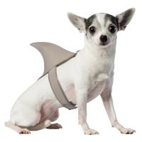 Shark Fin Dog Costume by Rasta Imposta | BaxterBoo